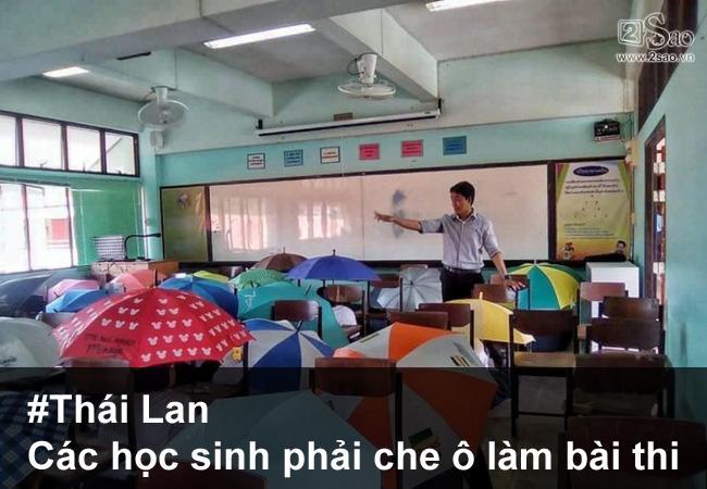 nhung-man-chong-gian-lan-thi-cu-quot-ba-dao-tren-tung-hat-gao3