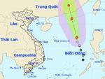 Tin nóng trong ngày 11/6: Biển Đông xuất hiện bão số 1 mạnh cấp 10, đất liền mưa rải rác cả tuần