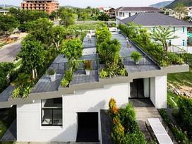 Lợp 'ruộng bậc thang' lên mái, ngôi nhà Việt được báo Tây khen hết lời