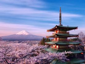 15 điểm đến ở Nhật Bản được khách quốc tế khen ngợi không ngớt