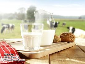 5 lý do tại sao bạn nên cân nhắc lại việc uống sữa bò