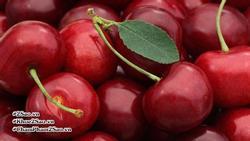 Những loại trái cây nhiều carbs mà bạn nên cân nhắc trong bữa ăn hàng ngày