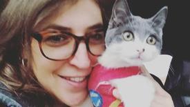 """""""Big Bang Theory"""" Star Adopts Special Needs Kitten"""