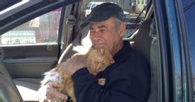Veteran Uses His Money To Feed Neighborhood Cats. 22 Years Later, He Hasn't Missed A Day