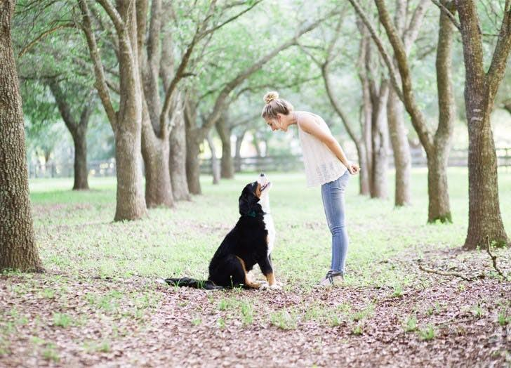 Muốn có sức khỏe tốt, bạn nên nuôi một chú chó