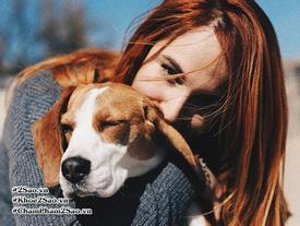 Khoa học đã chứng minh: Muốn có sức khỏe tốt, bạn nên nuôi một chú chó