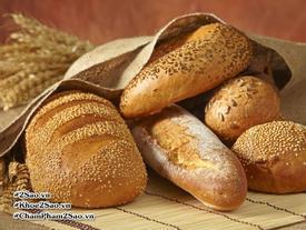 Gluten - 'chất độc' có trong thức ăn hàng ngày