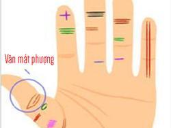 Nhìn vân bàn tay của bạn đoán ngay vận mệnh của mình