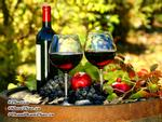 5 lợi ích bất ngờ của đồ uống có cồn có thể bạn chưa biết