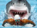 Truyện cười: Không biết bơi lại cứu người nhảy cầu