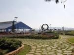 Vinamilk rót tiền tỷ đầu tư vào Hà Nội