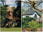 7 ngôi nhà trên cây như trong cổ tích