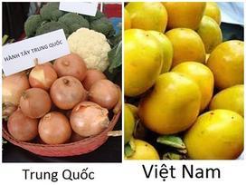Những cách nhận biết cực dễ rau củ quả Trung Quốc và Việt Nam bằng mắt thường