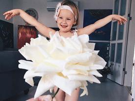 Cô bé 3 tuổi nổi tiếng với bộ ảnh chụp cùng hoa quả độc đáo