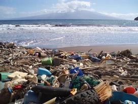 Những bãi biển nhìn như bãi rác