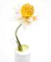Bông hoa cúc này được làm từ dừa, chocolate và vỏ chanh bào.