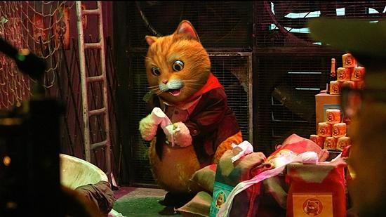 Phim tình cảm gia đình siêu mèo ra mắt -4
