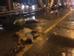 Khoảng 23h30 ngày 12/7, trên cầu Chương Dương hướng Long Biên sang quận Hoàng Kiếm (Hà Nội) đã xảy ra vụ TNGT đặc biệt nghiêm trọng giữa 2 ô tô và 1 xe máy làm 3 người tử vong tại chỗ. Cả ba nạn nhân đang tạm trú tại phường Tư Đình, quận Long Biên, Hà Nội. Ngay sau khi xảy ra vụ tai nạn nghiêm trọng trên, Đội CSGT số 5 đã có mặt bảo vệ hiện trường, điều tra nguyên nhân vụ việc.