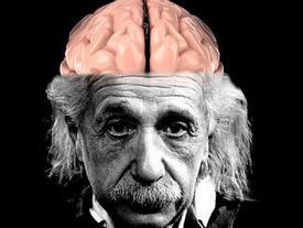 Chuyện bất ngờ về bộ não của thiên tài Albert Einstein bị đánh cắp trước khi hỏa thiêu