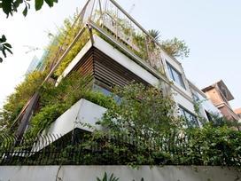 'Biệt thự xanh' tuyệt đẹp ở Hà Nội xuất hiện ấn tượng trên báo Mỹ