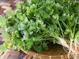 Tác hại đáng sợ của rau mùi, nhiều người vẫn vô tư ăn mà không biết