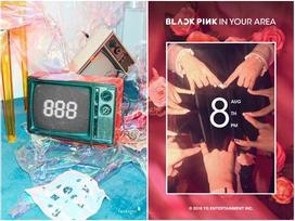 Chưa debut, girlgroup tân binh có tên 'ngồ ngộ' đã bị tố đạo nhái Black Pink