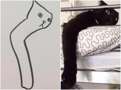 Cô giáo 'bối rối' với hàng loạt bức tranh học sinh vẽ... mèo