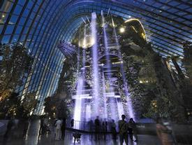Thác nước trong nhà cao nhất thế giới ở Singapore