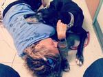 Chó cưng qua đời, chủ viết 'điếu văn' gây bão mạng xã hội