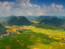 Bắc Sơn rực rỡ những mảng màu lúa chín