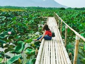 3 resort sinh thái gần Hà Nội cho người lười đi xa cuối tuần