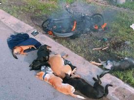 Hàng chục người dân Biên Hòa đốt xe, đánh 2 kẻ trộm chó