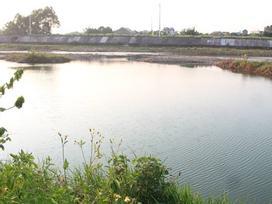 Quảng Ninh: 3 học sinh cùng trường đuối nước thương tâm