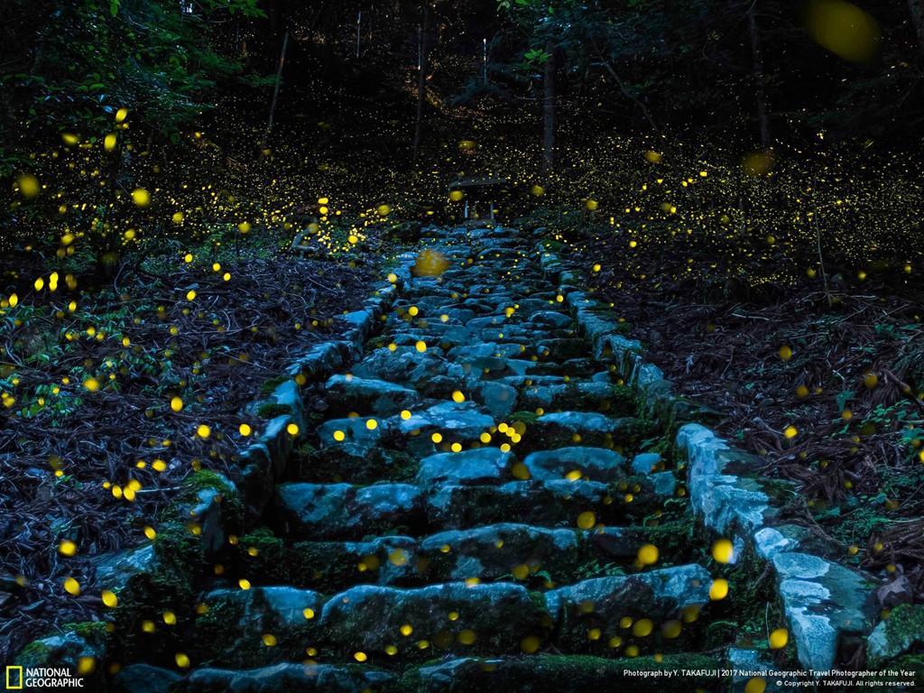 'Sức mạnh thiên nhiên' chiến thắng giải ảnh Du lịch 2017 của NatGeo-10