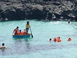 Clip: Du khách Việt thích thú ngắm 'thiên đường' của cá biển Lý Sơn