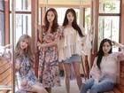 T-ara chưa có câu trả lời cuối cùng cho chuyến tái ngộ fan Việt vào tháng 9