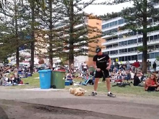 Clip: Phì cười với chú chó 'giả chết ăn vạ' trên đường vì không muốn rời công viên-3