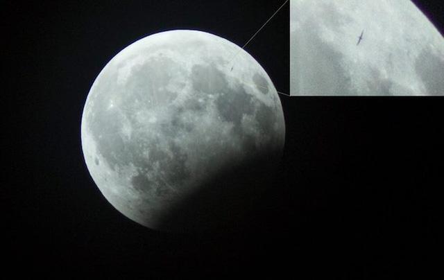 Phát hiện vật thể lạ trong ảnh 'gấu ăn trăng' ở Hà Nội-1
