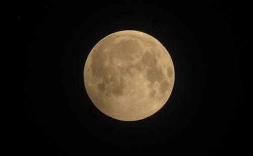 Phát hiện vật thể lạ trong ảnh 'gấu ăn trăng' ở Hà Nội-3