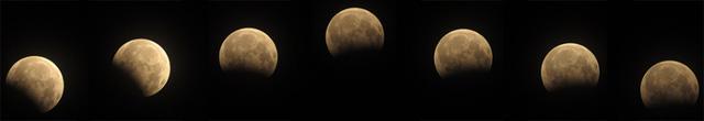 Phát hiện vật thể lạ trong ảnh 'gấu ăn trăng' ở Hà Nội-5
