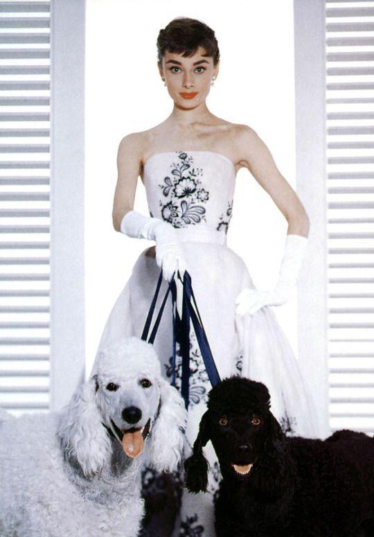 Biểu tượng thời trang Audrey Hepburn nói không với giày cao gót và bài học đáng quý cho phụ nữ-2