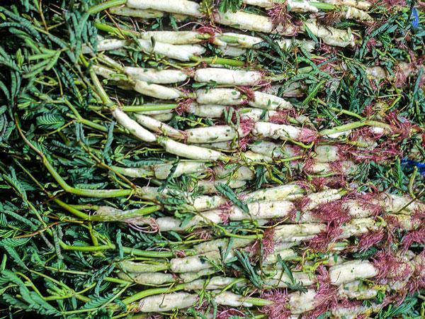 Hướng dẫn làm canh cua khoai sọ rau rút hấp dẫn ngày nắng nóng-4