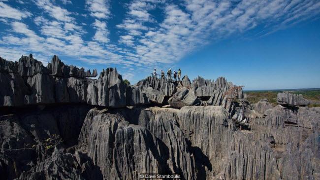 Kỳ quan rừng đá ít người có thể tới ở Madagascar-7