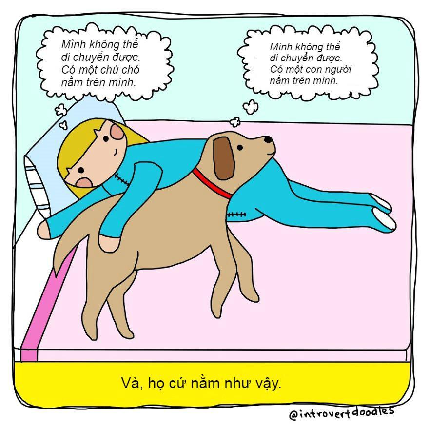 Những tình huống 'dở khóc dở cười' chỉ hội yêu chó mới hiểu-1