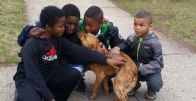 Four boys save abandoned dog tied with cords!