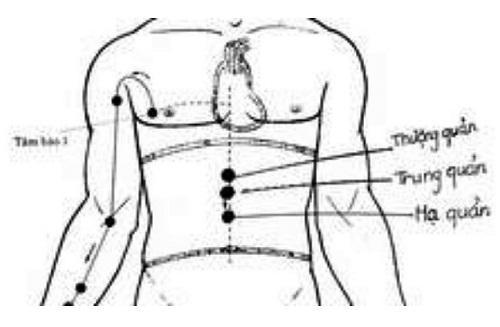Giảm béo cực đơn giản bằng cách bấm huyệt-2