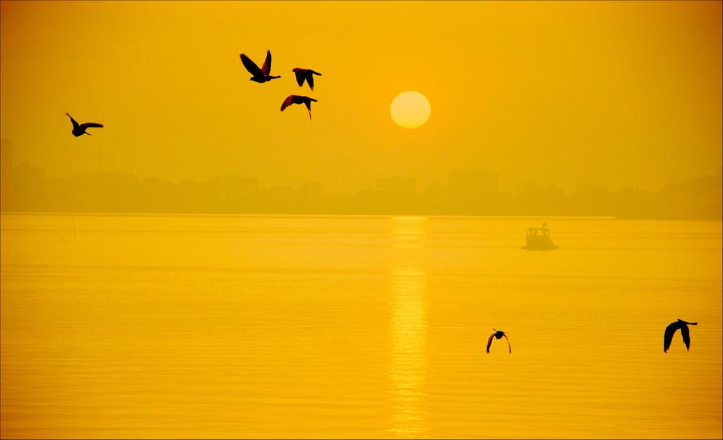 Trôi trên những mặt hồ êm ả trong 'Dấu ấn Việt Nam'-11