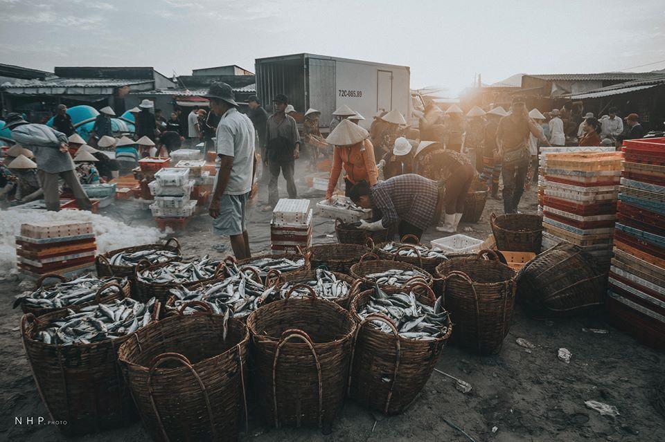 Hình ảnh bình dị trên cảng cá Bà Rịa - Vũng Tàu-4