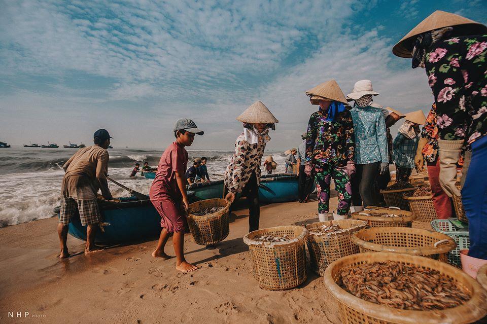 Hình ảnh bình dị trên cảng cá Bà Rịa - Vũng Tàu-12