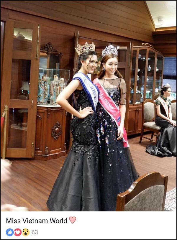 99% hoa hậu Đỗ Mỹ Linh đại diện Việt Nam dự thi 'Miss World 2017'-4